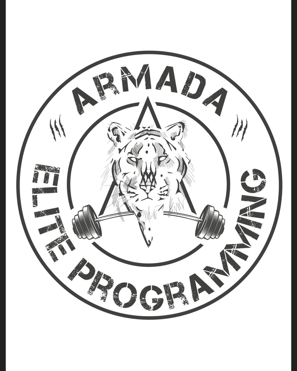 Armada Training Camp 3.0